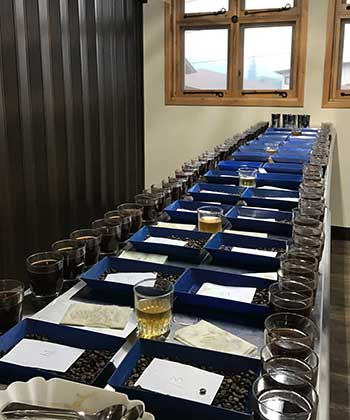 Image of cupping table at Finca Bella Vista on Spring 2017 Guatemala Coffee Buying Trip