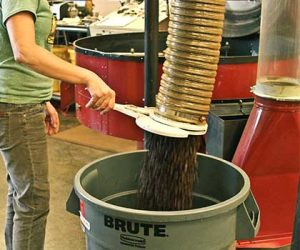 Seattle coffee roaster, Ladro Roasting empties roasted coffee loads into large bins after cooling